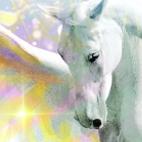 'Pegasus'